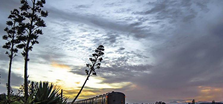 Reader photo: Train at sunset